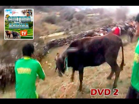 SANTIAGO COSTUMBRISTA 2013 - DVD 2