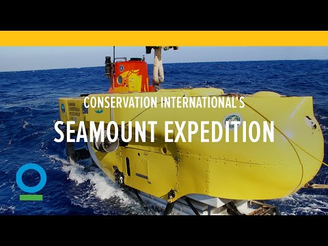 Seamount Expedition | Conservation International (CI)