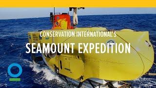 Conservation International Seamount Expedition