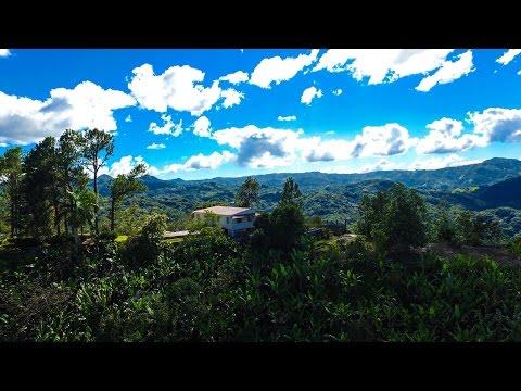 Hacienda Bona Vista - Castaner, Lares, Adjuntas Puerto Rico