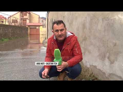 Përmbytjet në Shkodër, bashkë me ujin dhe peshqit në rrugë - Top Channel Albania - News - Lajme