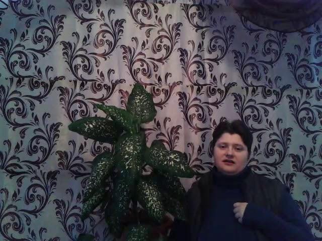 Изображение предпросмотра прочтения – ЕвгенияМерзликина читает произведение «Мне в душу просится былое» А.А.Блока