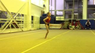 Спортивная гимнастика |вольные | 1 юношеский разряд