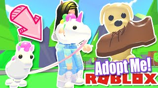 *NEW* 🐶PET TOYS & LEASH🐶 UPDATE in ADOPT ME Roblox Unicorn