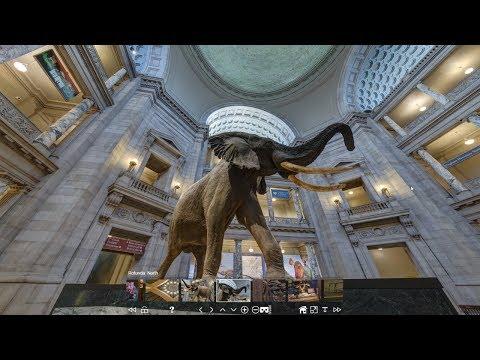 Виртуальные музеи новая реальность