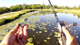 Bass Fishing a Small Lake that's LOADED with Fish!!!