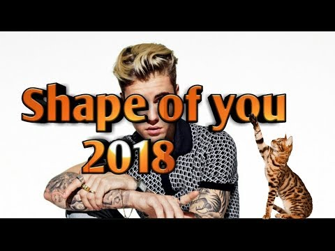 Shape Of You 2018 Ft. Justin Bieber  (Official Music Video)
