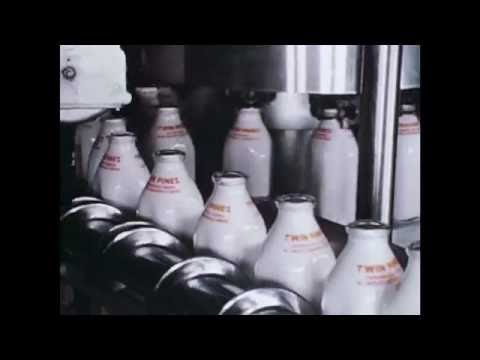 Detroit: Today and Tomorrow - Twin Pines Dairy and the Detroit Board of Health (1957)