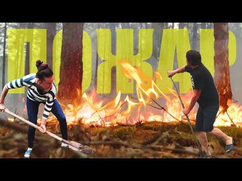 ВЛОГ: ПОПАЛИ в ЛЕСНОЙ ПОЖАР. Спасаем лес. видео из центра пожара.