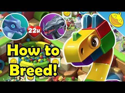 BLOCK DRAGON DOTW! How to Breed It + More Event Preparation! - DML #1031
