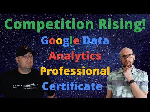Data Analyst Job with the Google Data Analytics Professional Certificate?