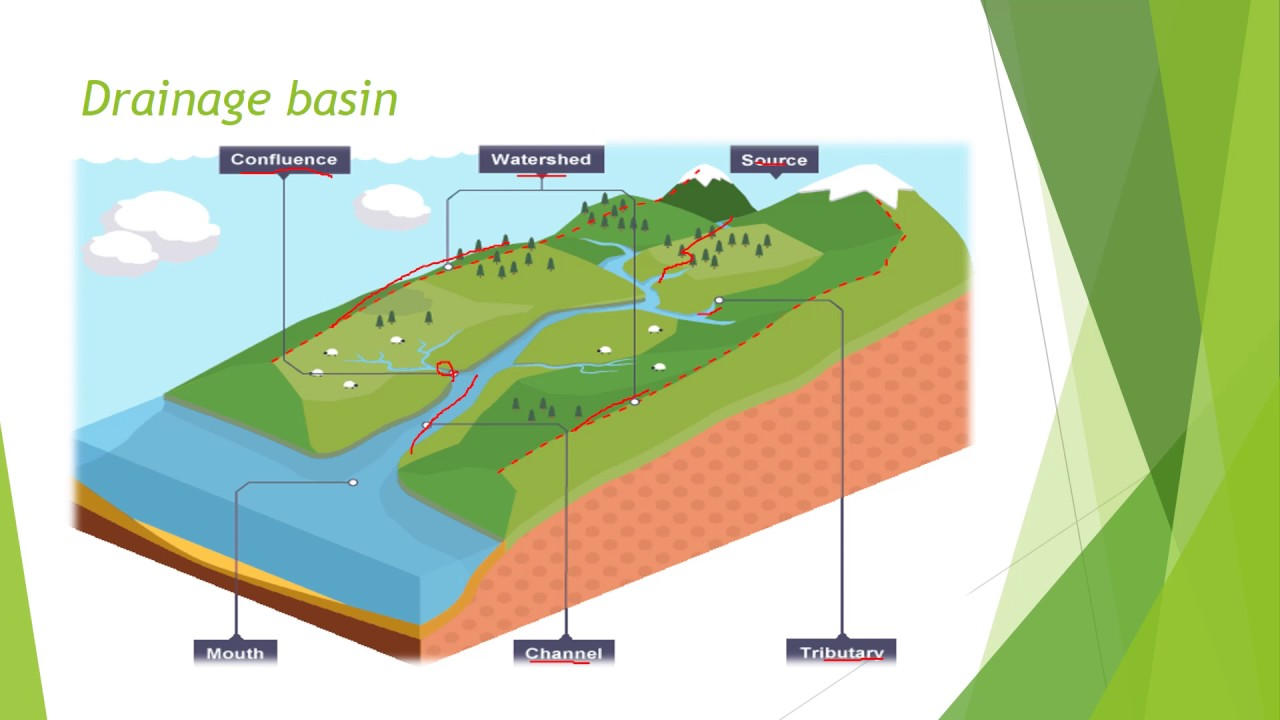 drainage essay A drainage basin is an area of land where all precipitation that falls will drain or flow downhill into a specific stream the water that falls on the ground and flows across the surface until it.