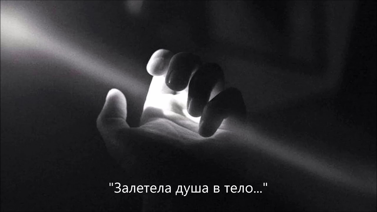 """Владимир Зыбкин - """"Залетела душа в тело..."""""""