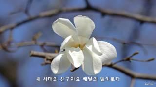 하얀 목련이 필 때면... 다시 생각나는 사람... 봄과 목련꽃 노래들