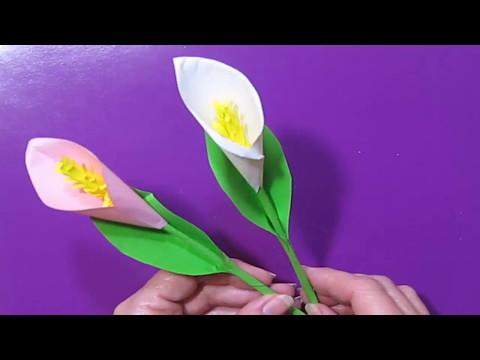 Цветы Из Бумаги Каллы Лилии. DIY ПОЛЕЗНЫЕ СОВЕТЫ ХОЗЯЙКАМ