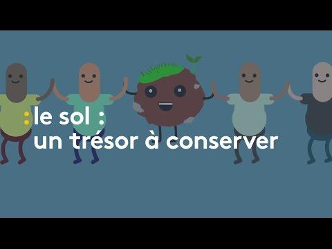 Le sol, un trésor à préserver - franceinfo