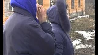В Липецкой области собака загрызла ребенка