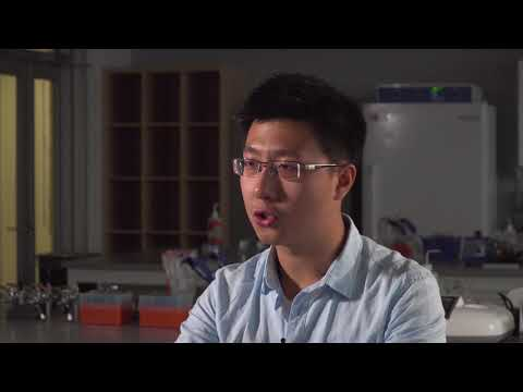 International student from China at the University of Calgary (Zhengru Yang, 2+2 Geology)