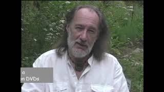 Herbal Action - Nervine