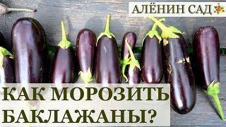ПРАВИЛЬНАЯ заморозка баклажанов / Заготовки на зиму