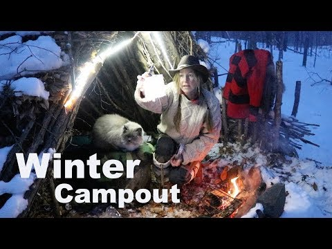 Bushcraft Shelter Overnight with my Dog & Cat~ Campfire Cooking