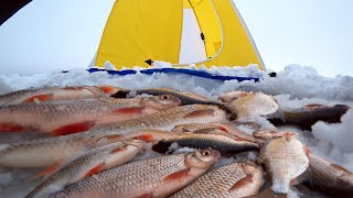Первая зимняя рыбалка 2021г