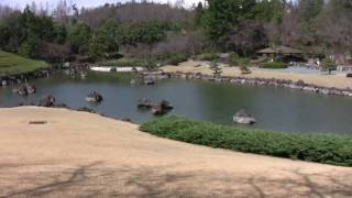 愛知県緑化センター「日本庭園」
