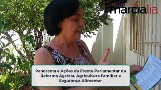 Semana Alimentação Saudável de Araraquara