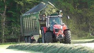 Gras silage with Massey Ferguson & Krone