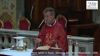14 APRILE 2019 DOMENICA DELLA PALME ANNO C SANTA MESSA ORE 1830 OMELIA