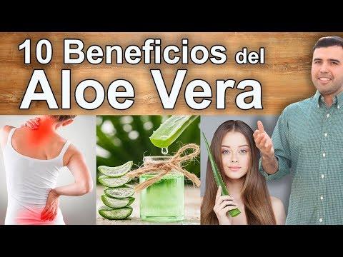 Para Qué Sirve El Aloe Vera - 10 Benefícios De La Sábila