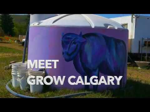 Grow Calgary Community Farm 2017 Promo Video   480p