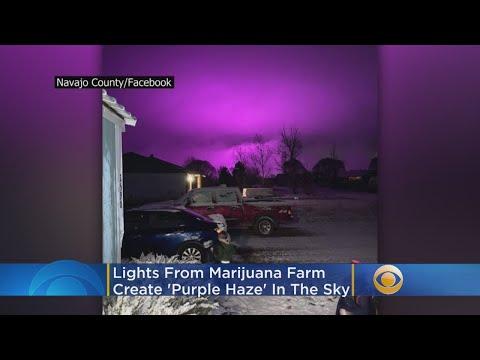 Deuce - Marijuana Farm Creates Purple Haze In Arizona Sky