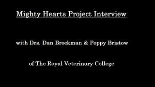 ungela Brockman interview