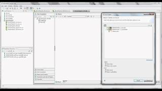 MultiSource Universe (Part 2) - SAP Business Objects 4.0 Information Design Tool