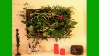 Vertical Garden System | Vertical Gardening | Diy Vertical Gardening | Ideas | How To