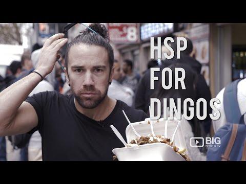 Food | (HSP) Halal Snack Pack for Dingos Amazing Kebab