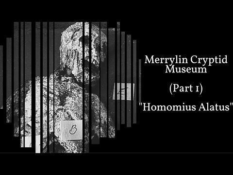 Merrylin Cryptid Museum (Part 1) - Homomius Alatus