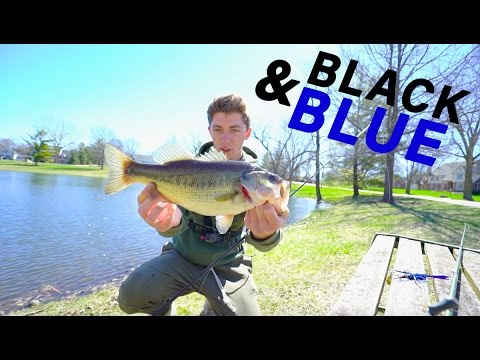 Black and Blue Lure Fishing Challenge