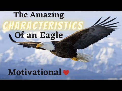Characteristics of an Eagle  Motivational