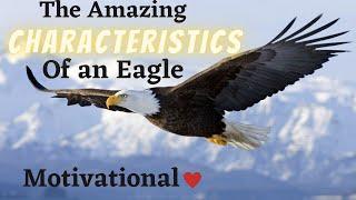 Characteristics of an Eagle - Motivational