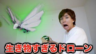 世界初?本物の鳥のように飛ぶドローンってマジ?!