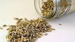 Storing Seeds Long Term