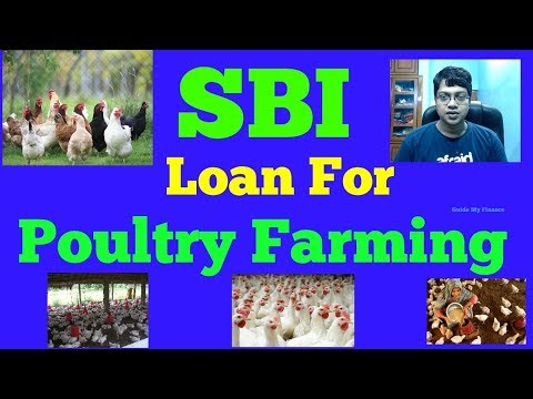 How to Get Poultry Loan from SBI | एसबीआई से पोल्ट्री लोन कै