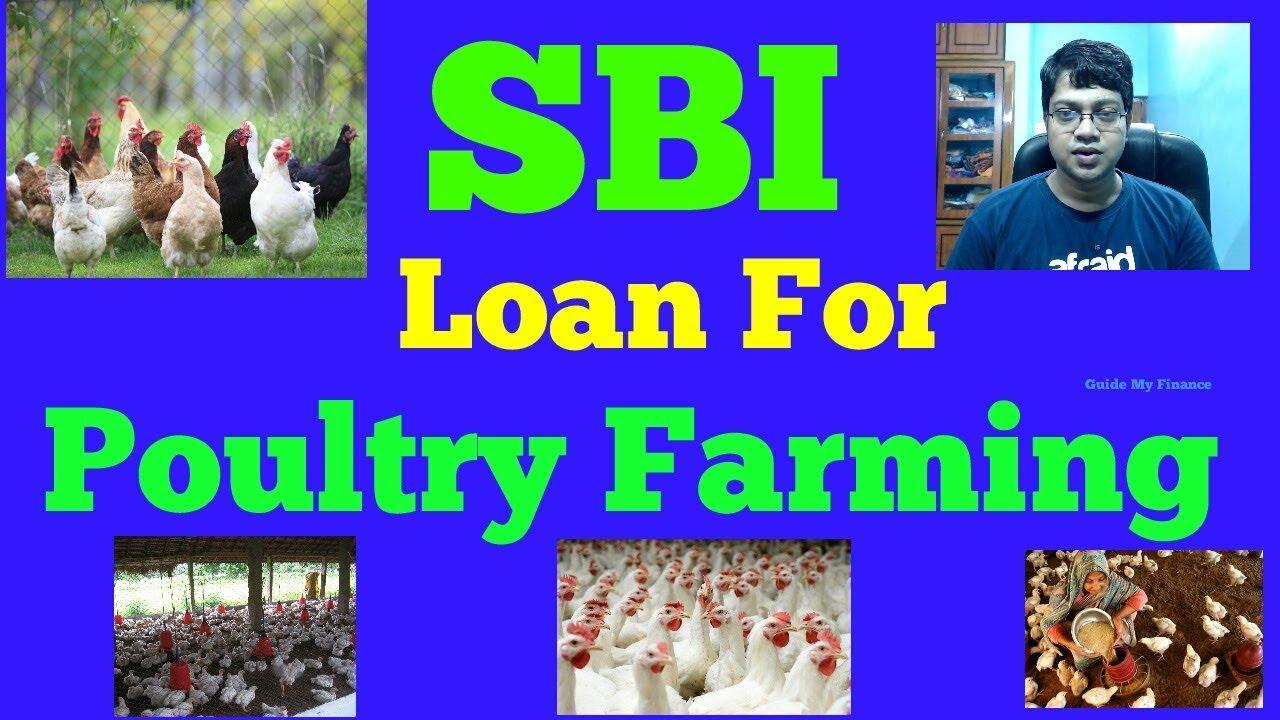 How to Get Poultry Loan from SBI | एसबीआई से पोल्ट्री लोन कैसे प्राप्त करें