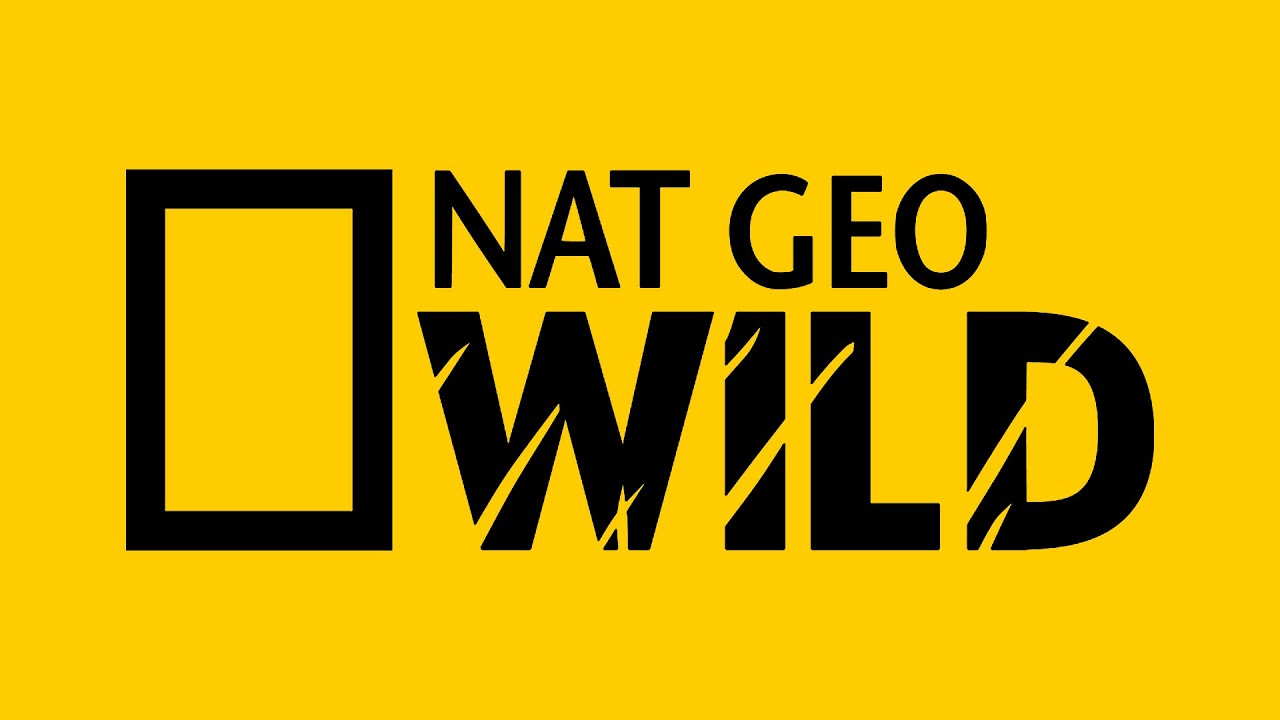 Nat geo wild arabic youtube - National geographic wild wallpapers ...