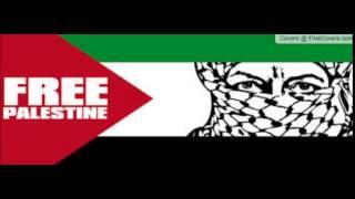 Brixton Cats  Palestine