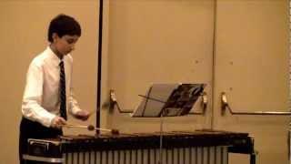 06 AWESOME PERFORMANCE -  Omid Tavakoli on the Marimba
