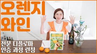 오렌지 와인에서 오렌지 맛이 나지 않는 이…
