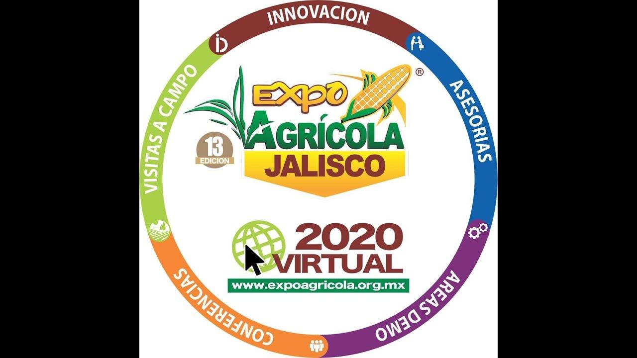 Inicio de la Expo Agrícola Virtual 2020